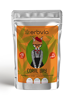 Coral bAY - FRUIT